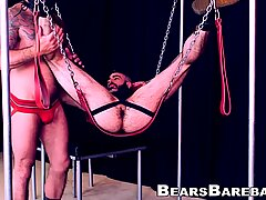 Macho bear rimming and drilling submissive cub
